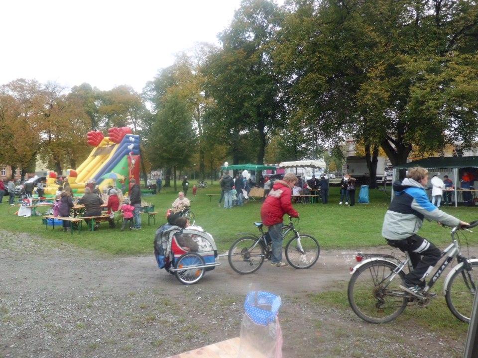 Fotos Drachenfest 2015 (3)